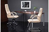 Galaxy Executive Office Chairs