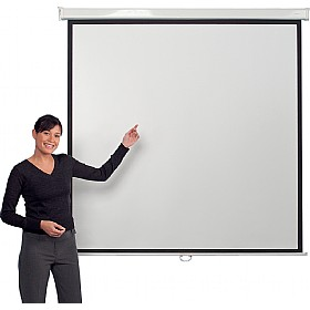 Manually Operated Projector Screens £80 -