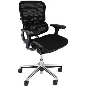Ergohuman Mesh Office Chairs (Without Headrest) £481 -
