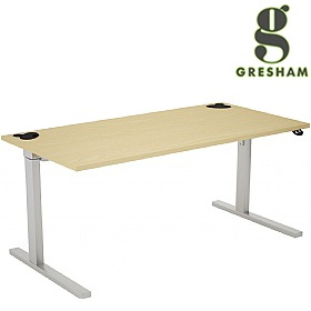 Gresham Rise Sit-Stand Rectangular Desks