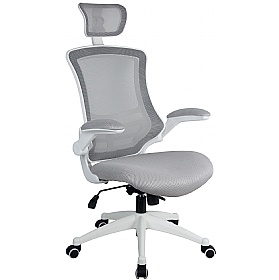 Flexi Mesh Office Chairs £112 -