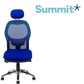 Summit Eeso Executive Mesh Back Office Chair With Headrest £315 -