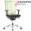 SAIL Executive Chair Modica & Green Mesh