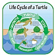 Life Cycle Of A Turtle Sign