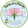Pollination (Parts Of A Flower) Sign