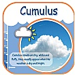 Cumulus Cloud Sign