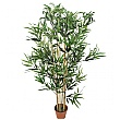 Golden Bamboo Tree - 4ft