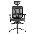 Carinosa II Mesh Office Chair
