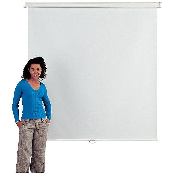 Budget Wall Mounted Projection Screens