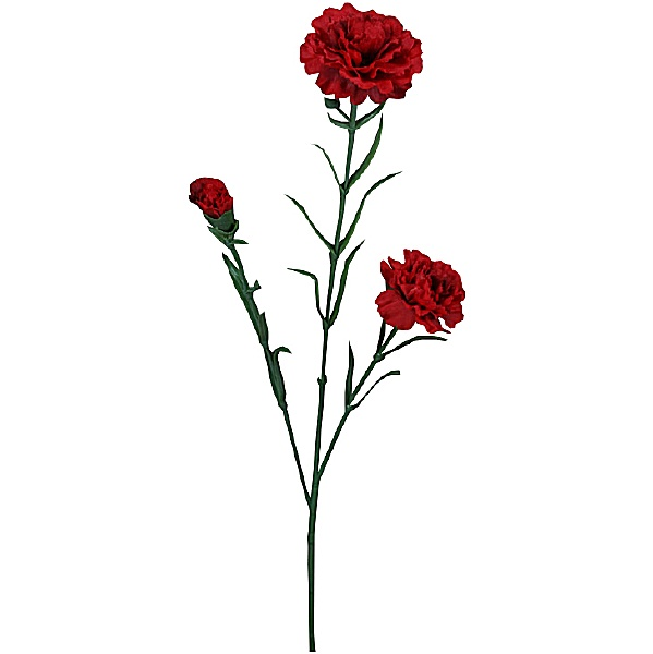 Triple Stem Carnation - Red