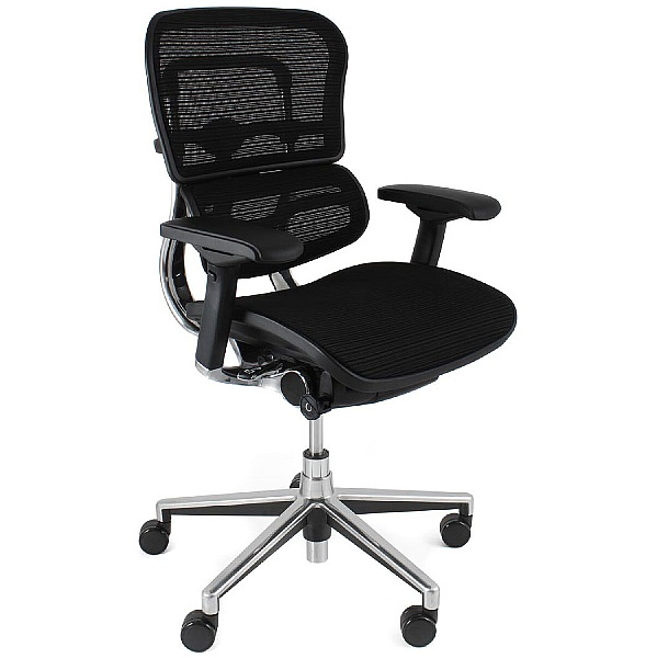 Ergohuman Mesh Office Chairs (Without Headrest)