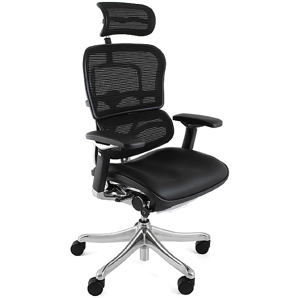 Ergohuman Plus Mesh & Leather Chair (With Headrest
