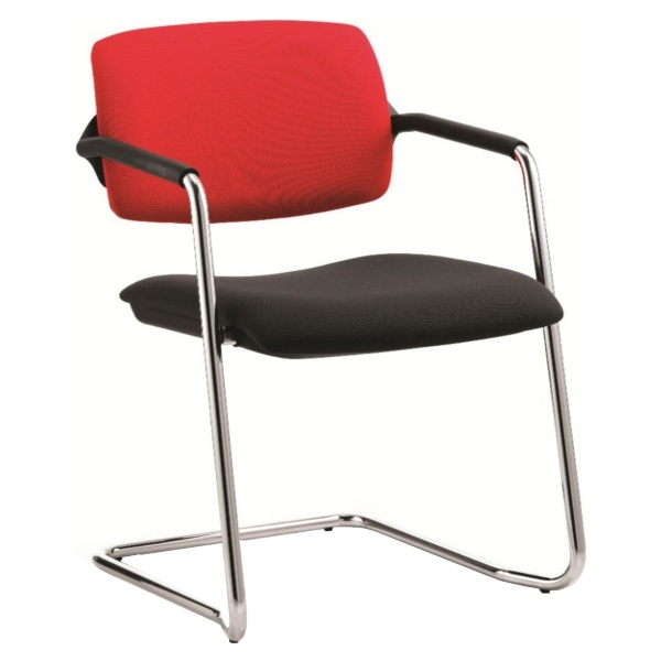 Alina Cantilever Conference Chair