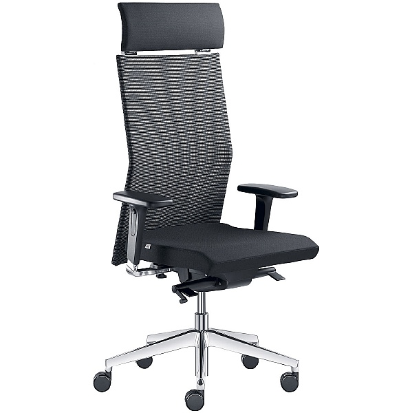 Web Fabric & Mesh Executive Chair