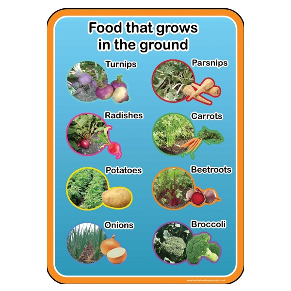 Healthy Eating Food From The Ground Sign
