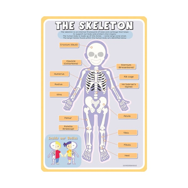 The Skeleton Sign