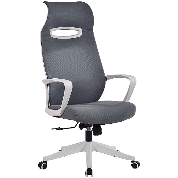 Spectra Mesh Office Chair
